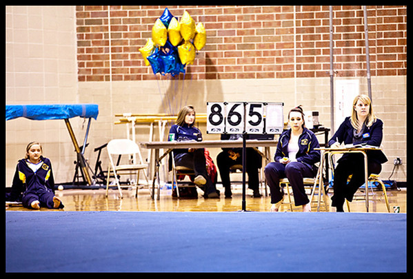 NV girls gymnastics 2011