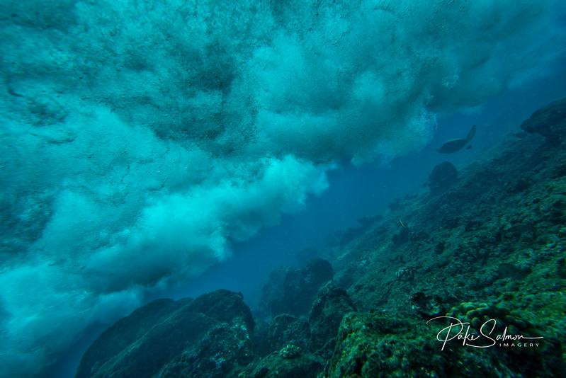 Honu Underwater Waves-