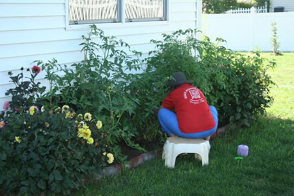 Nanay's Garden, Summer 2012
