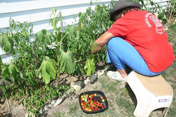 Nanay's Garden: Harvest Time