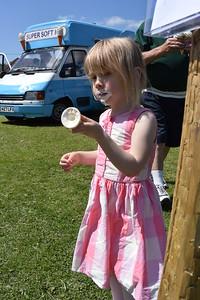 Naphill Carfest Jun 2015 001