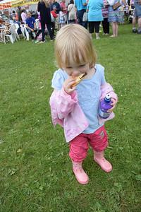 Naphill Fete June 2014 023