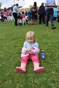 Naphill Fete June 2014 028