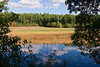 <b>Flooded meadow next to trail</b>   (Oct 13, 2007, 01:40pm)