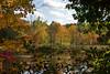 <b>Fall colors along trail</b>   (Oct 13, 2007, 01:54pm)