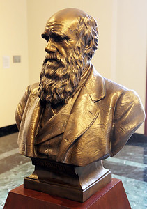 The Bust of Charles Darwin