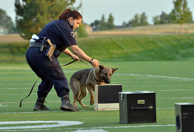 Broomfield Police Officer Danielle Fazcak with her K-9 Gypsy look for drugs for a demonstration during the National Night Out Picnic in the Park at Broomfield County Commons Park on Tuesday.  August 7, 2012 staff photo/ David R. Jennings
