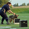 Broomfield Police Officer Danielle Fazcak with her K-9 Gypsy look for drugs for a demonstration during the National Night Out Picnic in the Park at Broomfield County Commons Park on Tuesday.<br /> <br /> August 7, 2012<br /> staff photo/ David R. Jennings