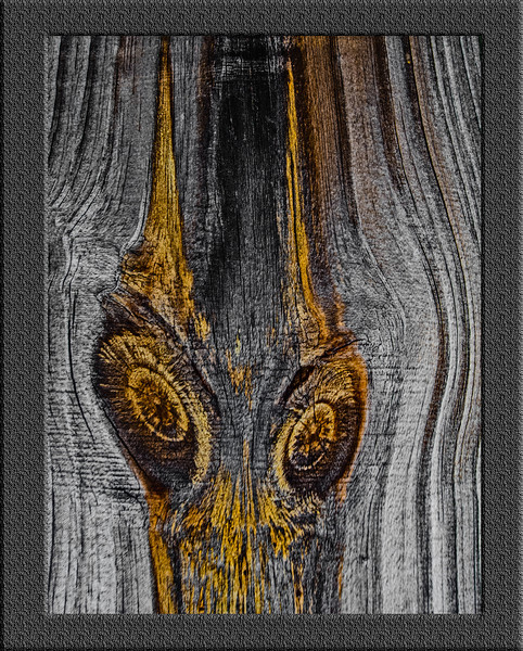 Wood Knots - Look like a pair of eyes