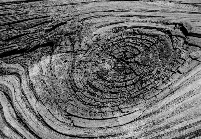 Wood Knot image