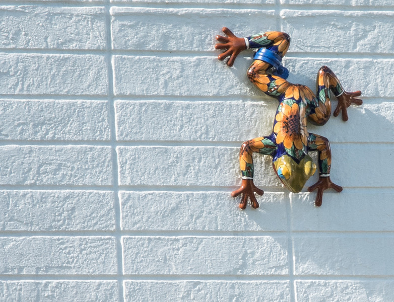 Gecko Outside Wall Decoration