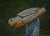 Wooden Turtle Carving