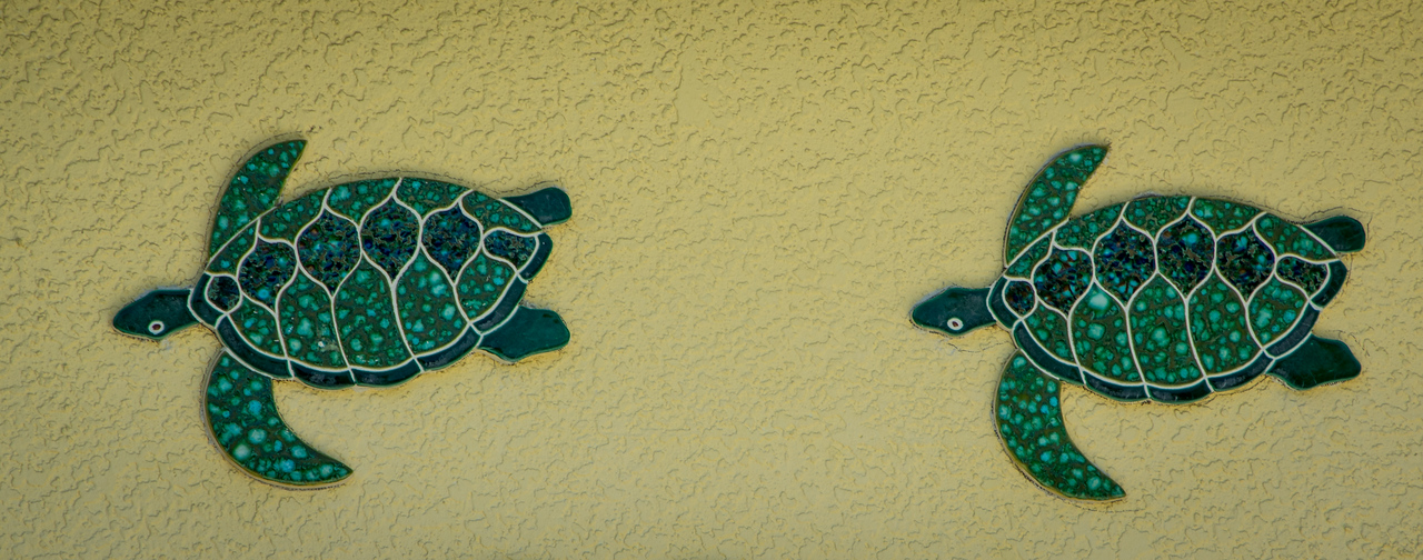 A couple of ceramic turtles on the move