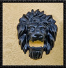 Lion wall Sculpture