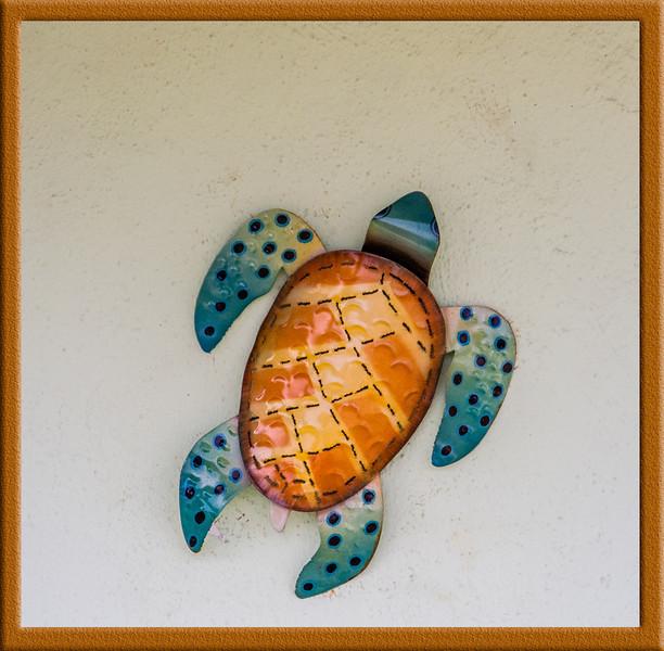 Metal Turtle wall design
