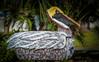 Wooden Pelican Mailbox