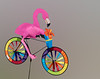 Flamingo driving a colorful wind driven bike