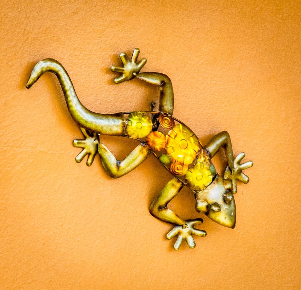 Curly tailed Lizard House Ornament
