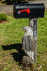 • Location - Indialantic<br /> • Bald Eagle Mailbox