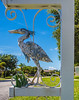 • Location - Indialantic<br /> • Metal Heron under a mailbox