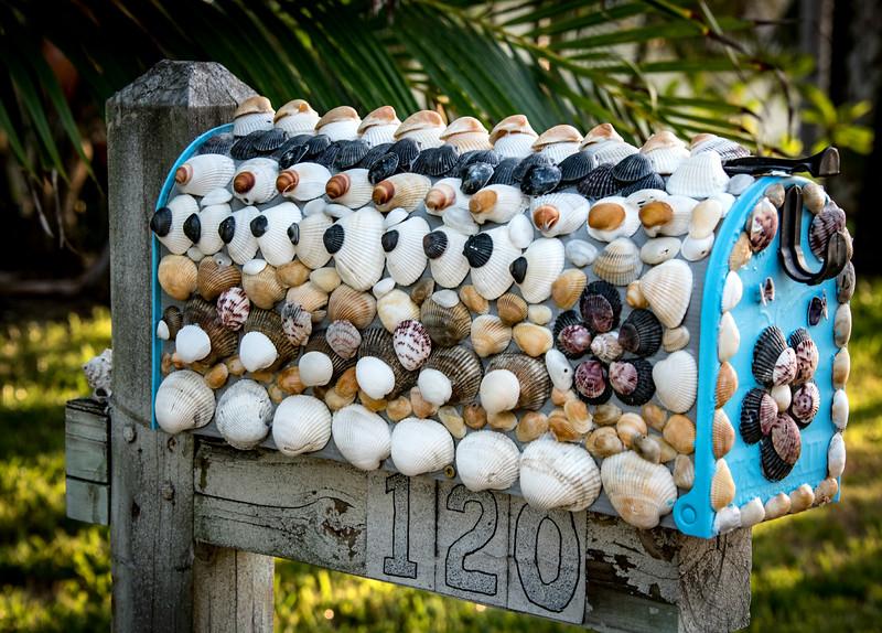 Seashell mailbox
