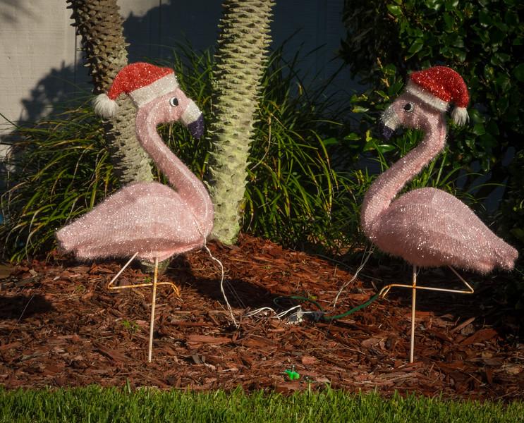Flamingo wearing Christmas hat
