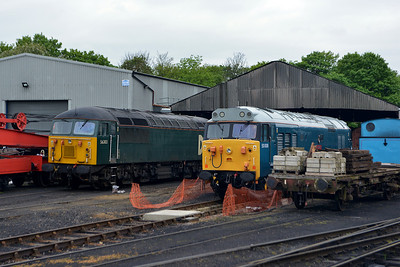 "Class 56 No 56303 & Class 50 No 50008 ""Thunderer"" in Wansford Yard on 18 May 2013"