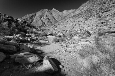 Palm Canyon, Anza Borrego