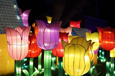 New York State Chinese Lantern Festival 2018
