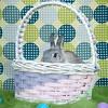 GPF_Easter14_19