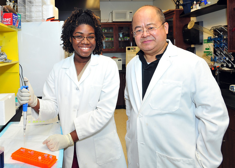 Ashlea Hendrikson, shown at left with her mentor Dr. Hongwei Yu, is one of 12 undergraduate students spending this summer as a biomedical research intern at Marshall University. A student at Oakwood University in Huntsville, Ala., Hendrikson is participating in Marshall's Summer Research Internship for Minority Students (SRIMS) program. Photo by Rick Haye/Marshall University.