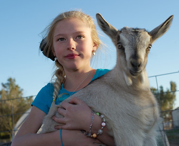 Baby goat pictured with McKinley, Monte and Laura's granddaughter, at Quail Hollow Farm CSA in Overton, Nevada.