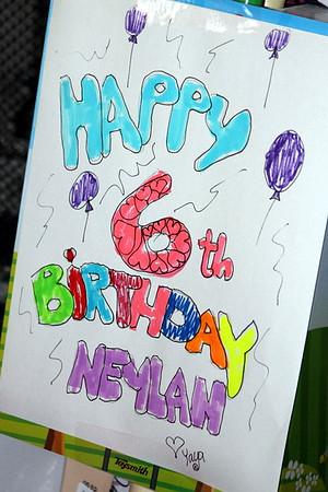 Neylan 6th Birthday