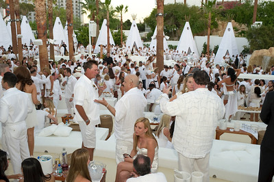 High quality photo gallery of Nikki Beach Club at Tropicana Casino in Las Vegas Nikki Beach Club includes a restaurant, outdoor cafe with bar, swim up blackjack, sand volleyball courts and a private island in the center of the Tropicana pool.There is an outdoor concert space where Tropicana will provide world-class Las Vegas nightlife entertainment with the hottest musicians from around the globe. Special offers for Nikki Beach Club at http://www.troplv.com/nikki-beach    Image by Las Vegas photographer Mark Bowers of  ww.ReallyVegasPhoto.com  All rights reserved. Photographs for private use only with Credit: Image by Mark Bowers ww.reallyvegasphoto.com