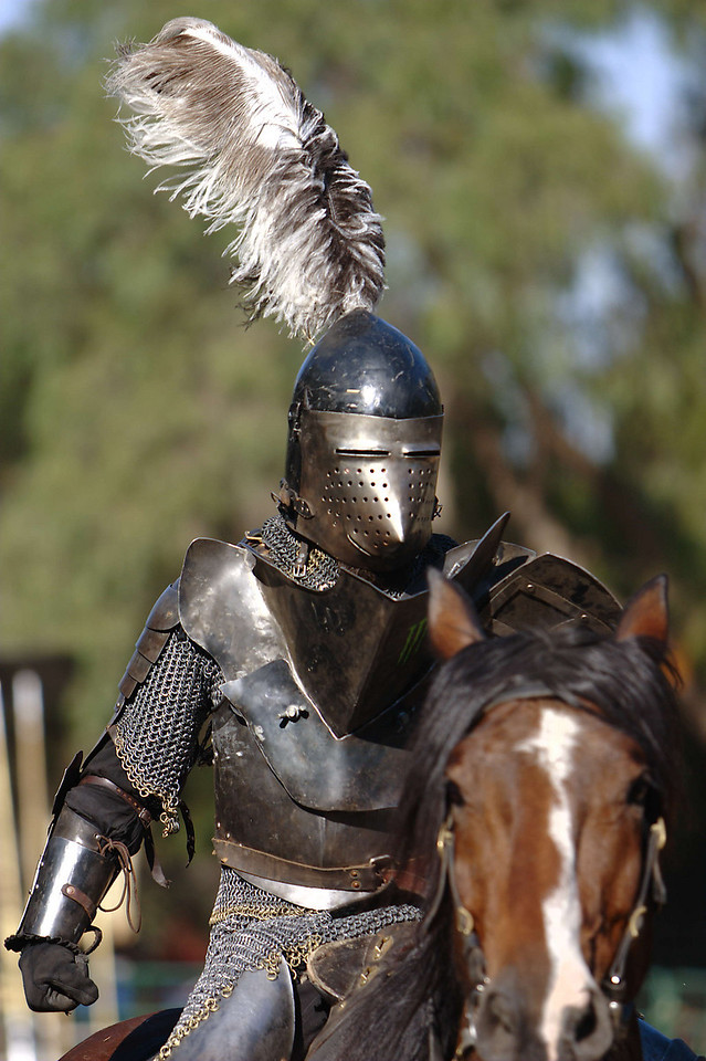 Thats a lot of metal for the knight - and the horse - to bear.  And there can't be much visibility out those eye slits.  Looks awesome, though.  And I like the feather, too.