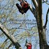 Branck Brook Park_0669