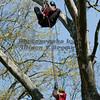 Branck Brook Park_0670