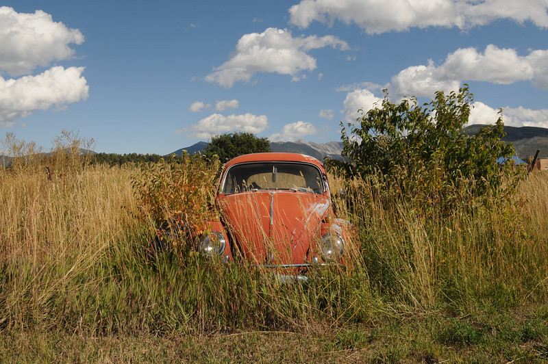 A VW bug.
