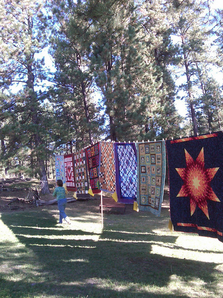 There we were, minding our own business, driving through the Black Hills of South Dakota, not far from Mt. Rushmore, and all of a sudden a quilt shop with a Sunday show appeared out of nowhere. Imagine that, and that Cynthia found some fabric to buy.