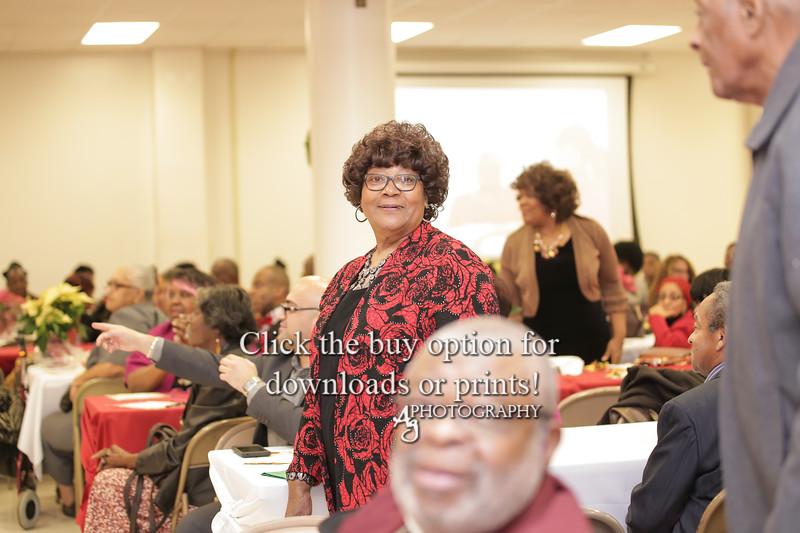 Northwoods Gala 2019 - Ag Photos-6157