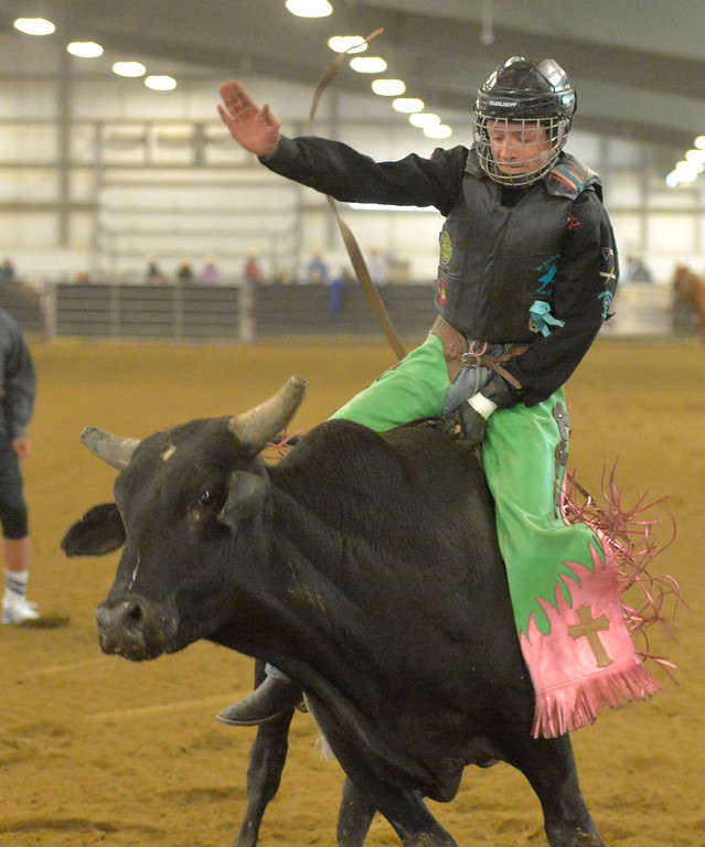 Justin Sheely | The Sheridan Press<br /> Dylan Bradford competes in Jr. Steer Riding during the performance of the Northern Plains Indian Rodeo regional finals Saturday at the Sheridan College AgriPark.