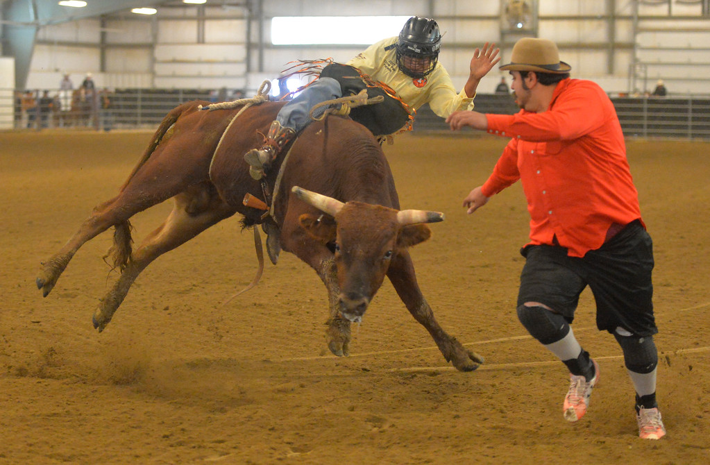 Justin Sheely | The Sheridan Press<br /> Jr. Steer rider Kix Thomas competes during the performance of the Northern Plains Indian Rodeo regional finals Saturday at the Sheridan College AgriPark.