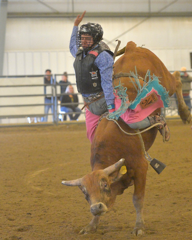 Justin Sheely   The Sheridan Press<br /> Boots Coyote Runs competes in Jr. Steer Riding during the performance of the Northern Plains Indian Rodeo regional finals Saturday at the Sheridan College AgriPark.