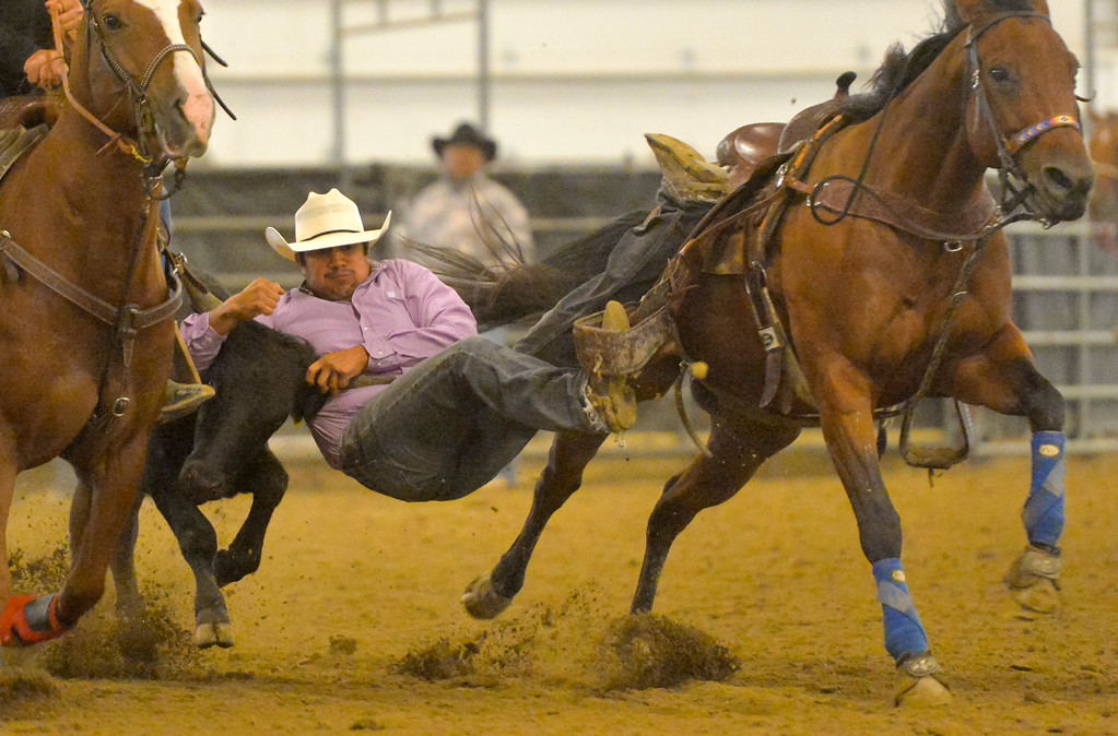 Justin Sheely | The Sheridan Press<br /> Kaden Whitebear competes in steer wrestling during the performance of the Northern Plains Indian Rodeo regional finals Saturday at the Sheridan College AgriPark.