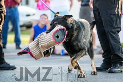 NorthlakeVetClinic-Party-20150815-201