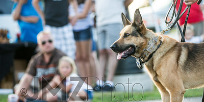 NorthlakeVetClinic-Party-20150815-99