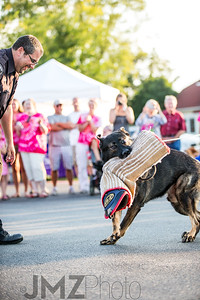 NorthlakeVetClinic-Party-20150815-192