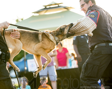 NorthlakeVetClinic-Party-20150815-138
