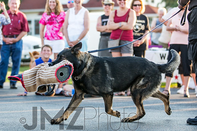 NorthlakeVetClinic-Party-20150815-188