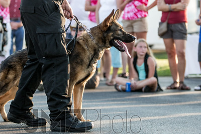 NorthlakeVetClinic-Party-20150815-76